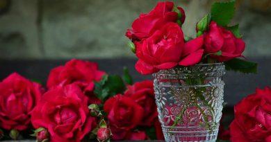 płatki róż